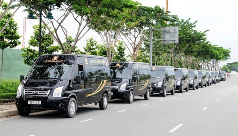 hoa mai limousine